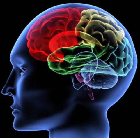 Drie tips om je hersenen jong te houden!