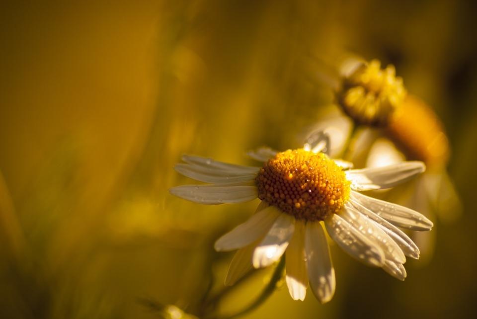 Drie tips voor meer innerlijke rust en emotioneel evenwicht.