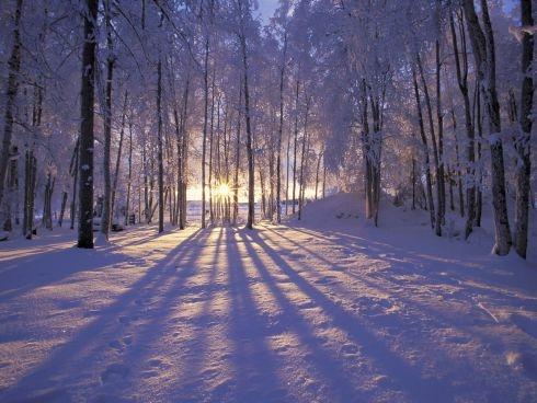 Vijf tips zodat je je gelukkiger voelt in de winter..