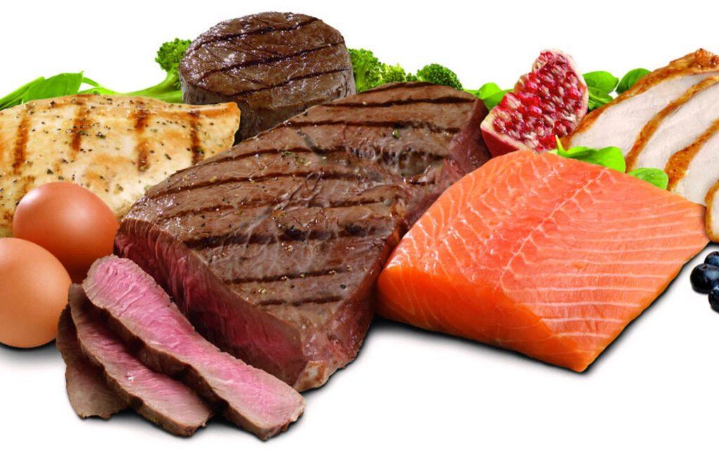 Eiwitten| het belang van voldoende eiwitten.