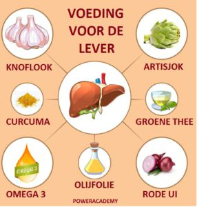 Voeding voor de lever