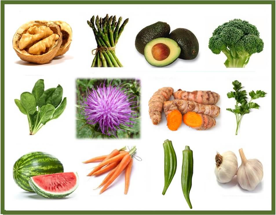 Glutathion, de moeder van alle antioxidanten